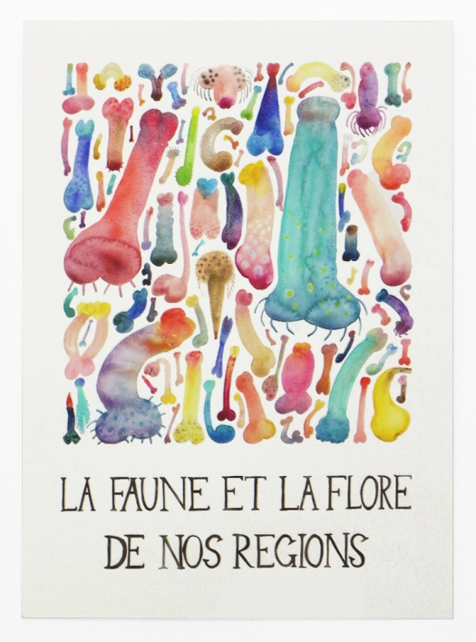 La-faune-et-la-flore-ossements-et-cotyledons-celinenotheaux-